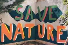 El-huerto-escolar-del-CEIP-Pintor-Camaron-llena-de-color-los-patios-del-colegio-12
