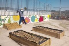 El-huerto-escolar-del-CEIP-Pintor-Camaron-llena-de-color-los-patios-del-colegio-13