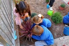 El-huerto-escolar-del-CEIP-Pintor-Camaron-llena-de-color-los-patios-del-colegio-15
