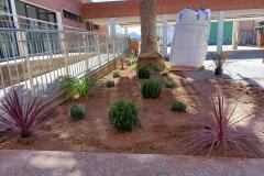 El-huerto-escolar-del-CEIP-Pintor-Camaron-llena-de-color-los-patios-del-colegio-6