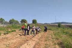 Marisa-Lopez-ha-visitado-el-huerto-donde-los-usuarios-del-CRIS-realizan-el-taller-de-agricultura