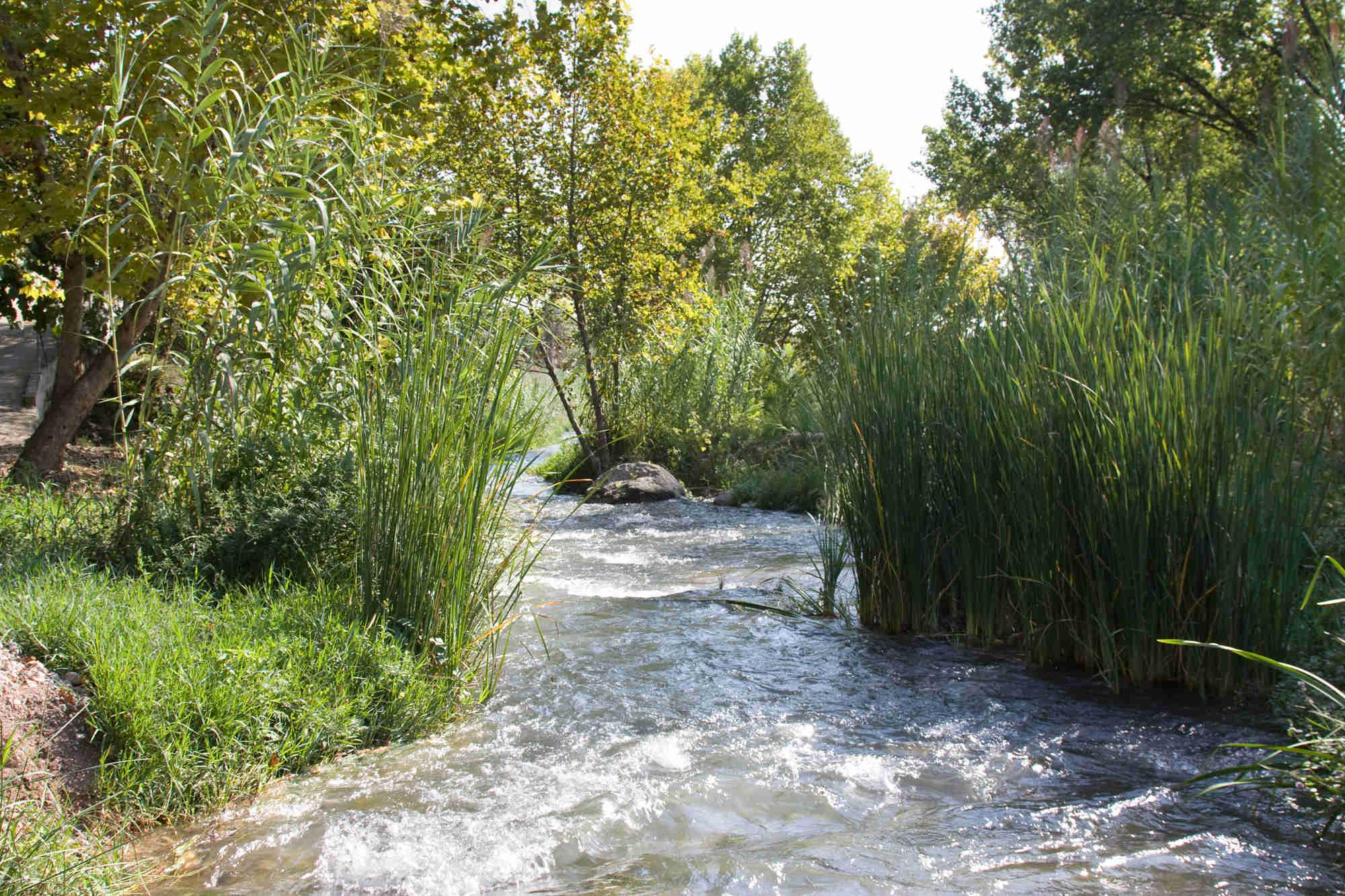 Naturaleza de Segorbe