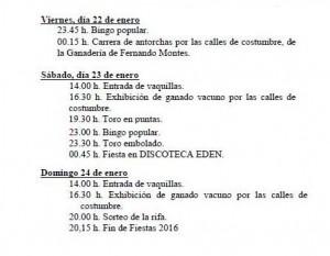 Programa de eventos de San Antón