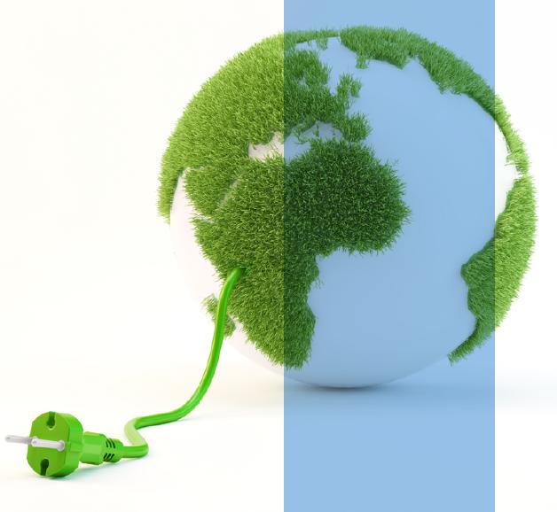 Salvaguarda del medio ambiente
