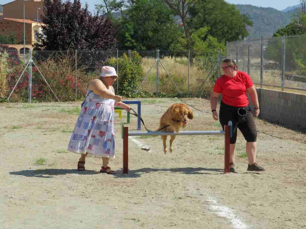 Usuarios del Centro Ocupacional de Segorbe participan en la exhibición de adiestramiento canino en el Parque Canino de Segorbe