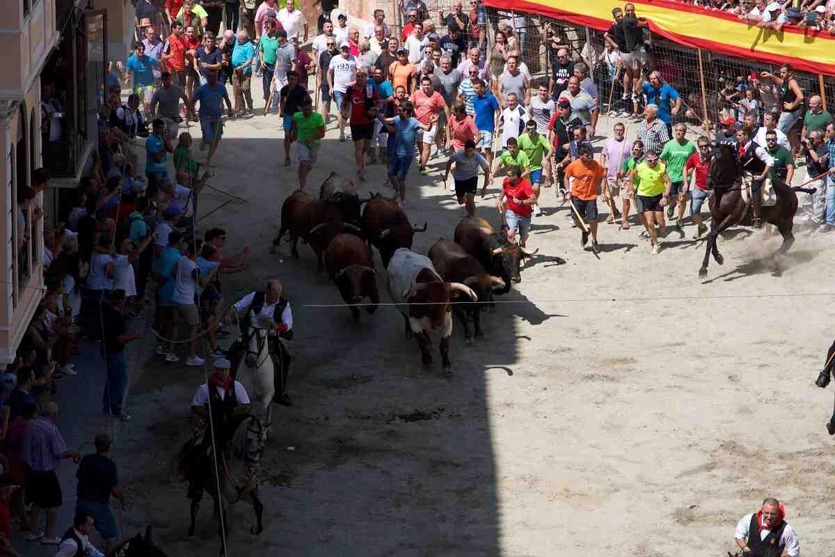 La Entrada de Toros y Caballos de Segorbe. Salida de los toros en la plaza de los Mesones (2)