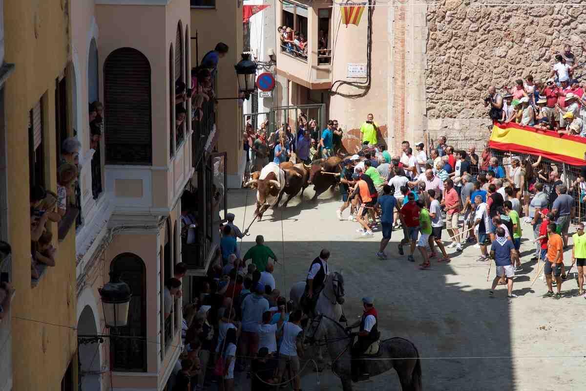 La Entrada de Toros y Caballos de Segorbe. Salida de los toros en la plaza de los Mesones