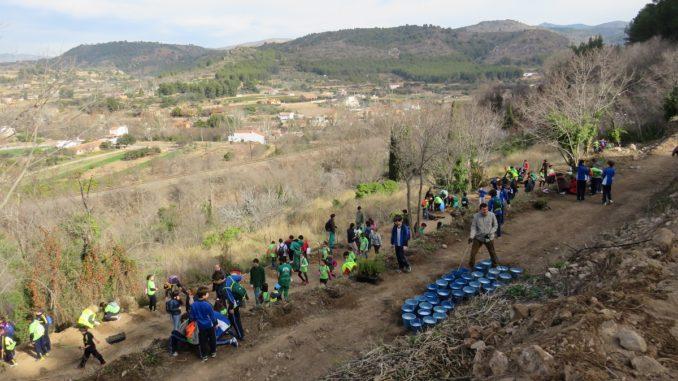El alumnado de quinto de primaria de los tres colegios de Segorbe ha participado en el acto