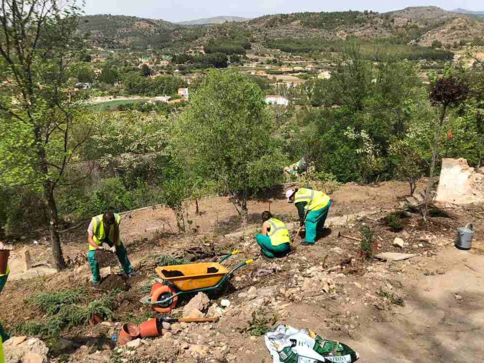 Trabajos de plantación en el paraje del Argén
