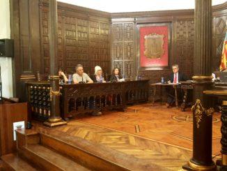 Mª Teresa García, Concejala de Comercio de Segorbe, ha respondido a las preguntas en el Pleno