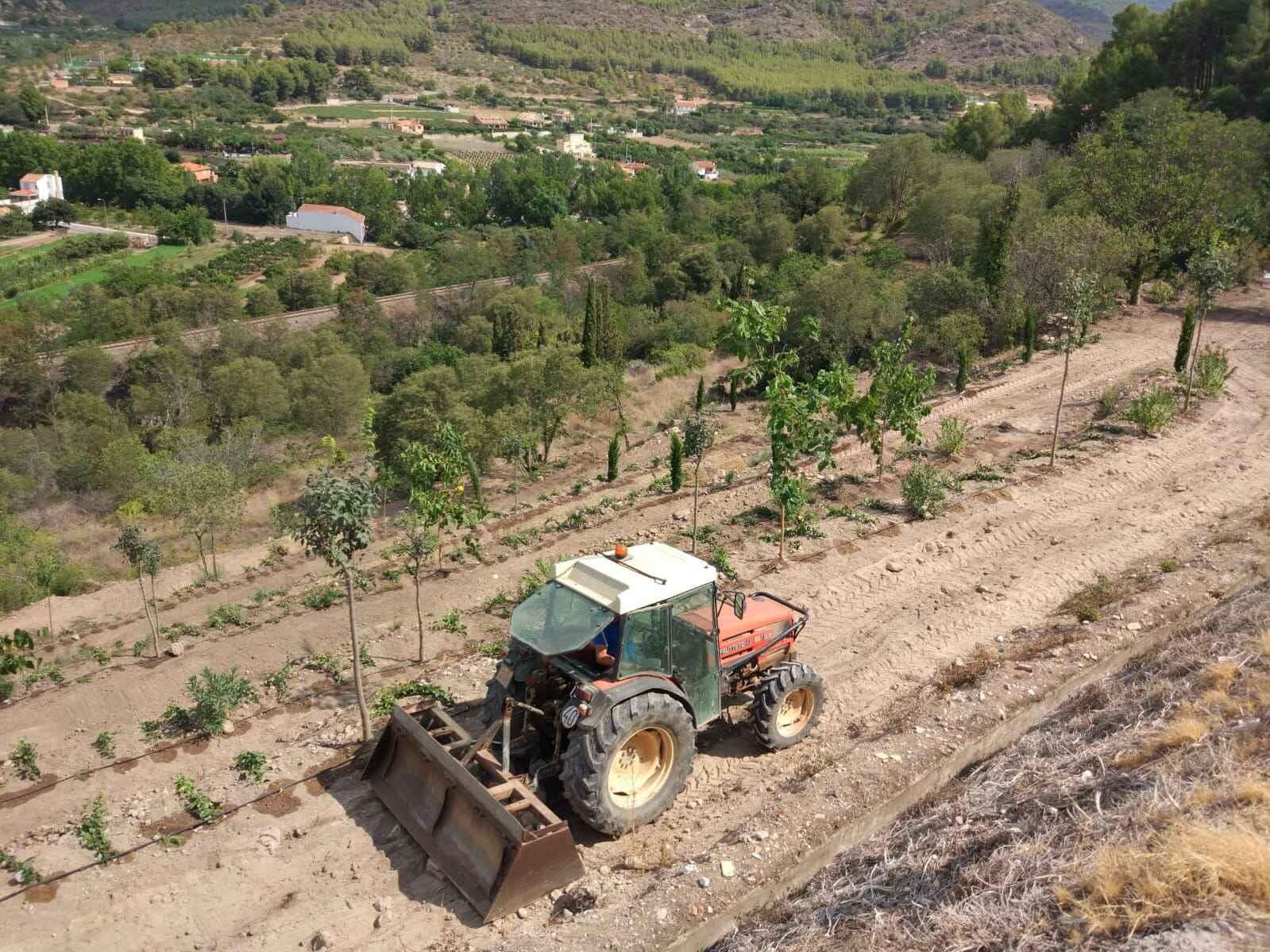 Tareas de mejora de la zona del Argén.